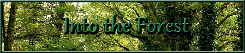 Into the Woods and Forest